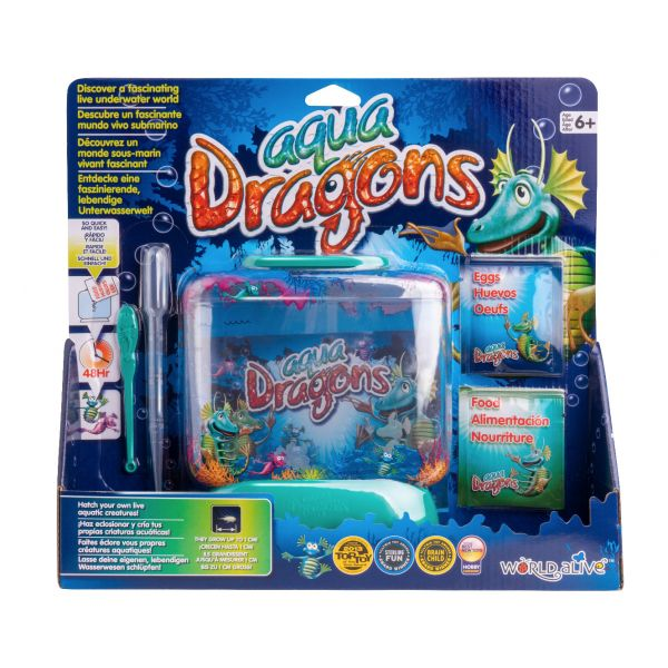 Aqua dragons aquarium