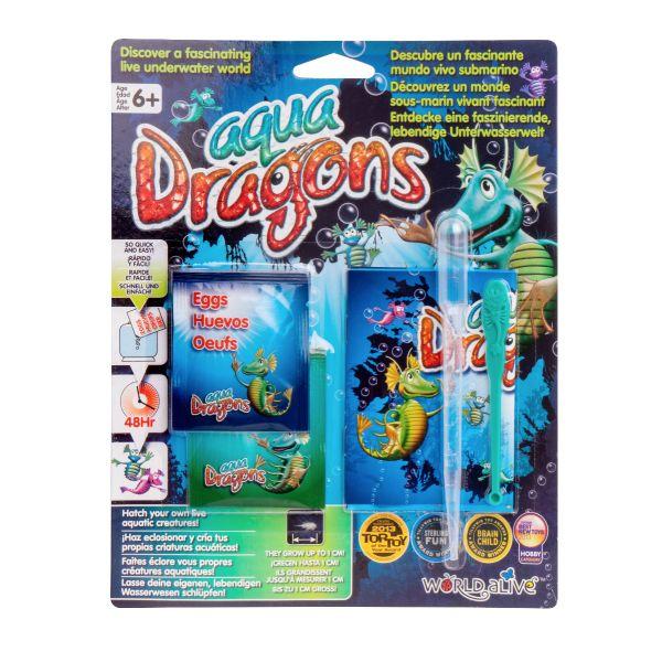 Aqua dragons blister