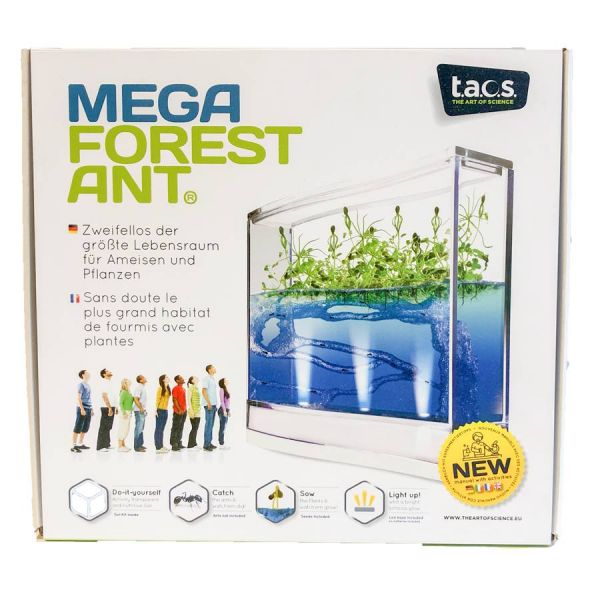 Mega Forest Ant Box