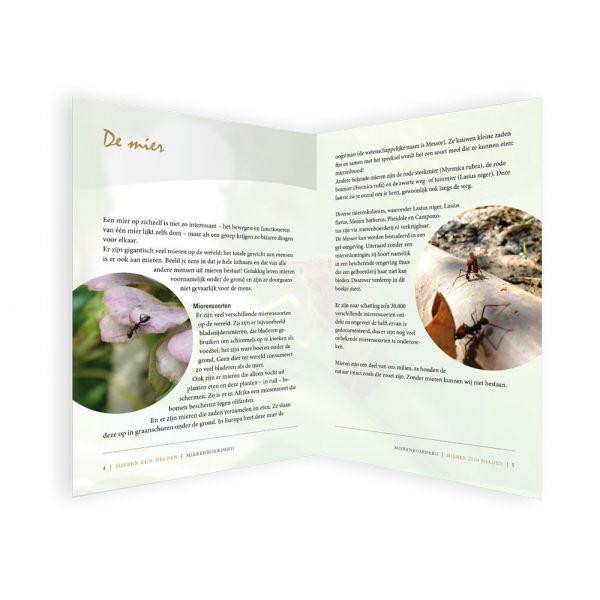 Boekje 'Mieren zijn Helden'! binnenkant 2