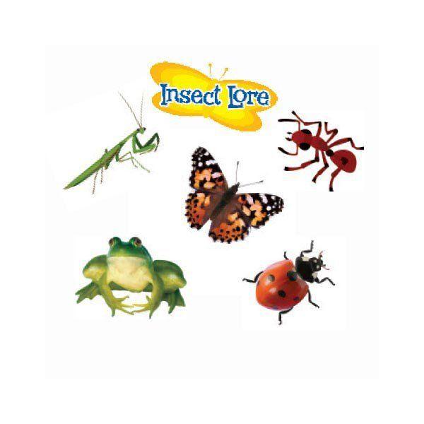 Insecten plak tattoos, sticky tattoos