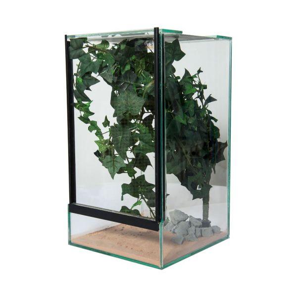 Insecten Terrarium inclusief inrichtingsset