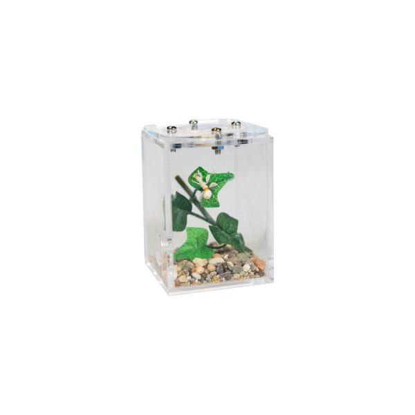 Mini Insecten verblijf, 5x5x7