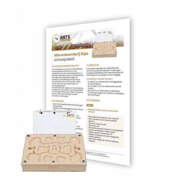 Mierenboerderij Gips Schoolpakket