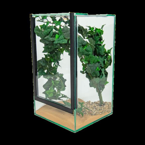 inrichting set, decorative terraraium