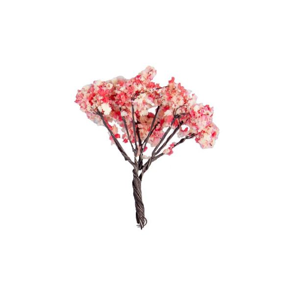 Ornamental tree, sierboompje
