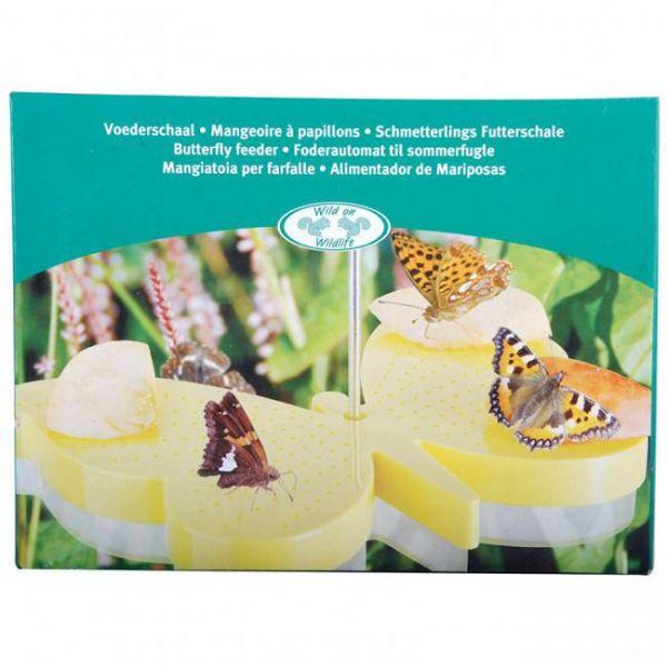 Vlinder voederschaal doos