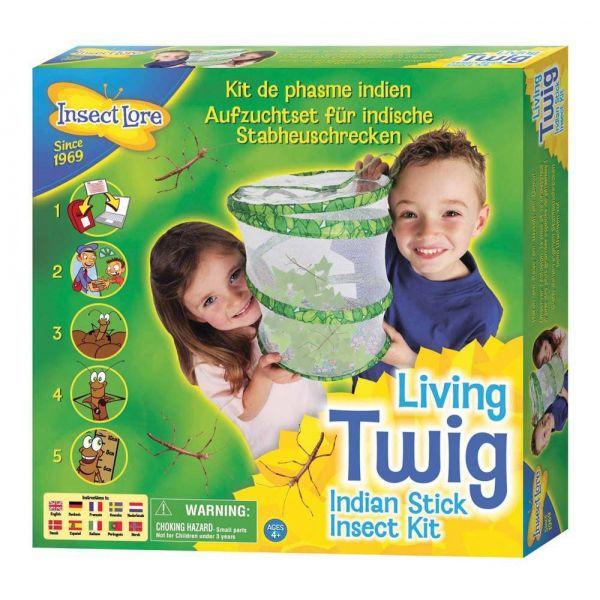 Living twig kit, wandelende tak kwekerij