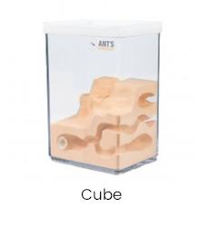 Mierenboerderij cube